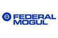 Divize Vehicle Components společnosti Federal-Mogul byla přejmenována na Federal-Mogul Motorparts