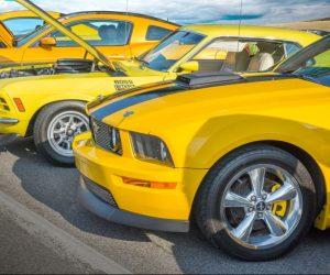 Auto Kelly zařadila do sortimentu originální díly na americké vozy