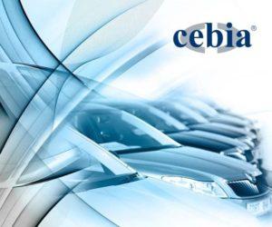 Cebia má 195 milionů nových dat o haváriích a tachometrech k ojetým vozům ze zahraničí