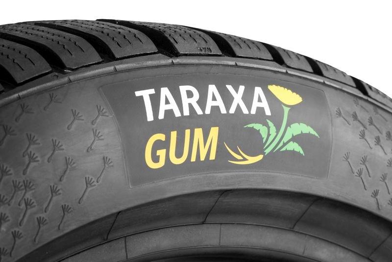 Continental Taraxa Gum