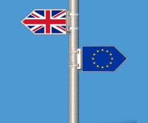 Motorizace na kolizním kurzu bez dohody o brexitu